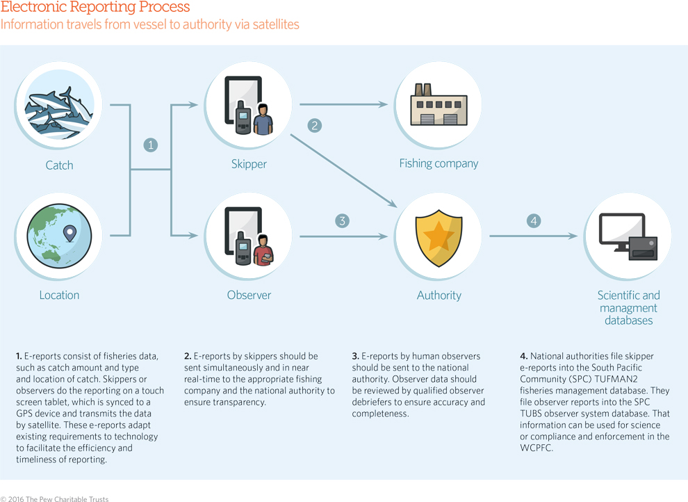Electronic Monitoring/Reporting graphic