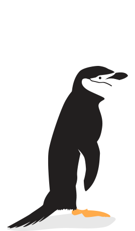 Penguins Of The World Threats And Solutions The Pew Charitable Trusts
