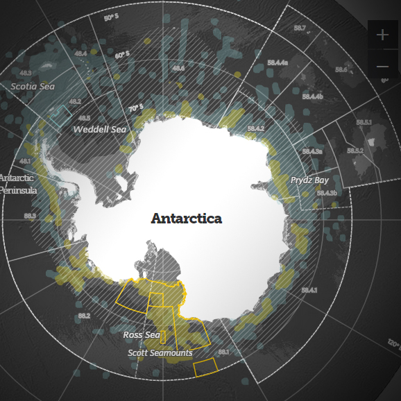 Protecting Our Southern Ocean