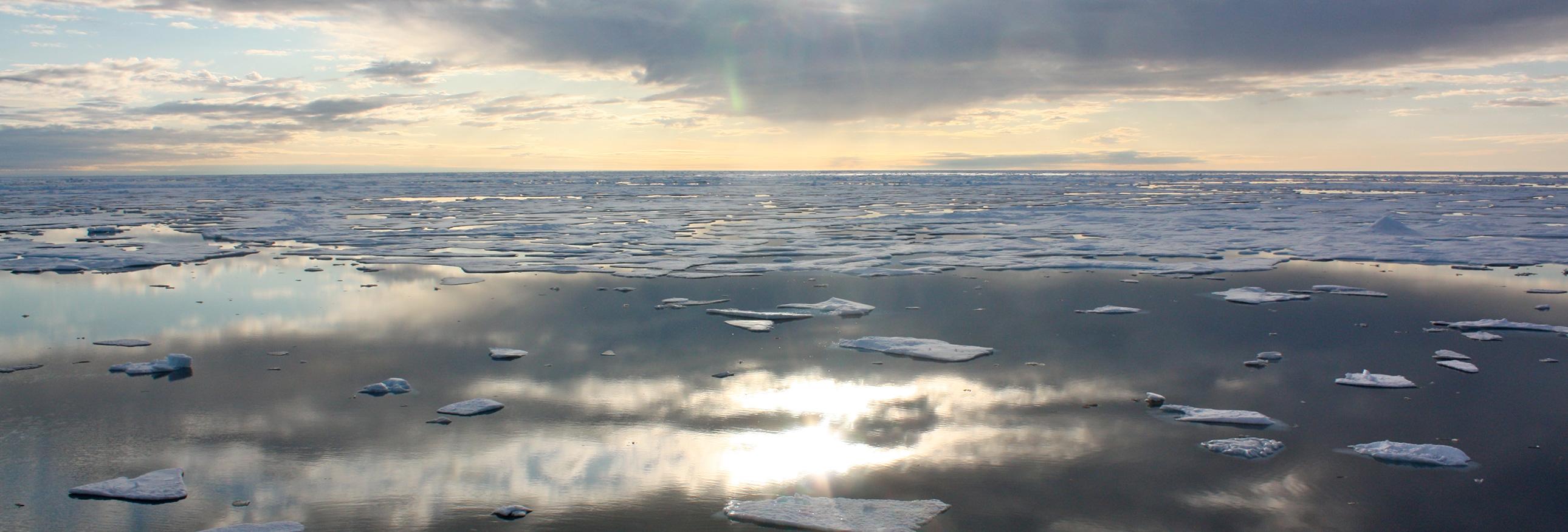 ice floes in the Arctic