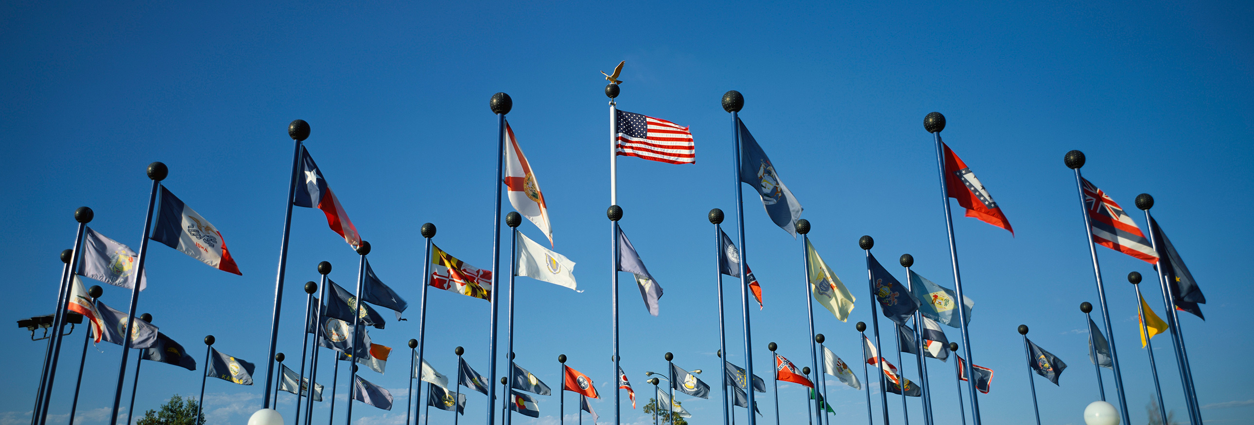 US state flags on flagpoles against a blue sky