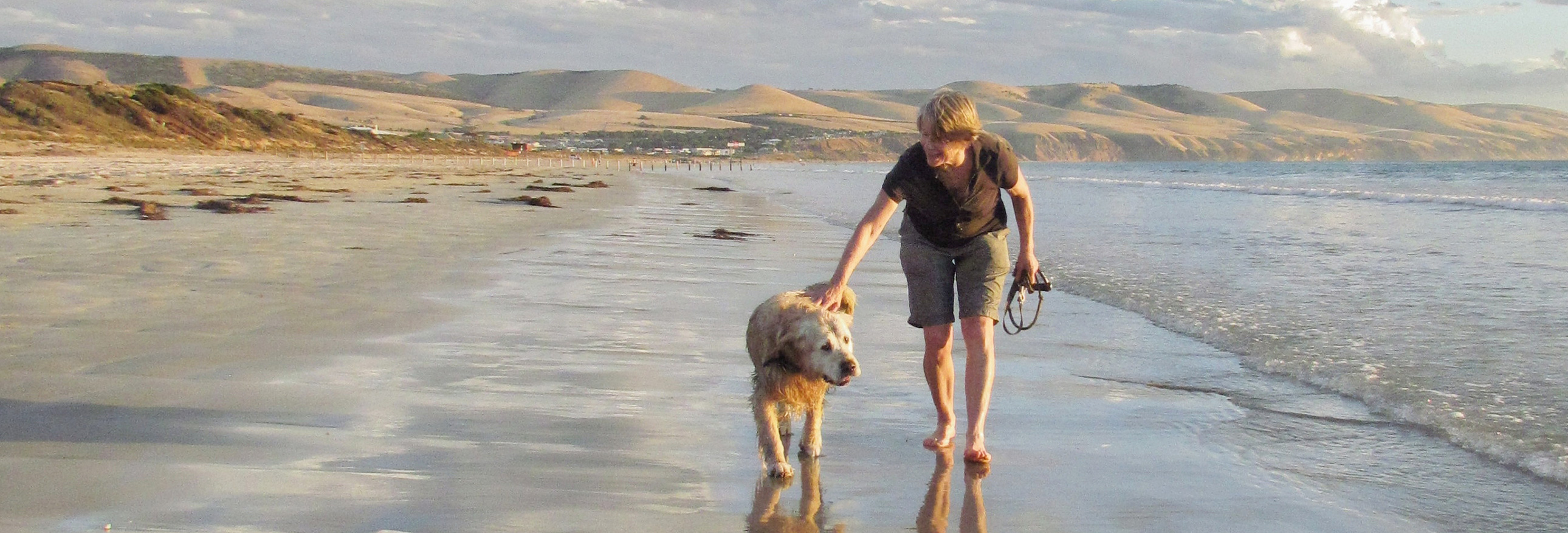 woman and dog walking on the beach