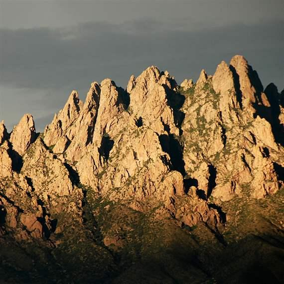 Organ Mountains win