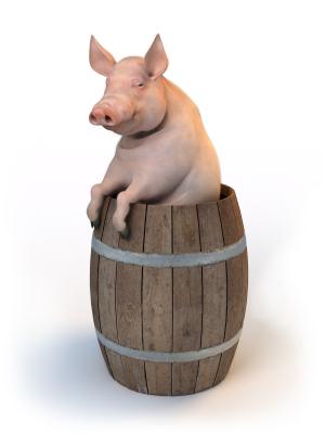 pork barrel examples