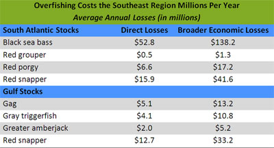 Overfishing Costs the Southeast Region Millions Per Year