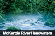 McKenzie River Headwaters