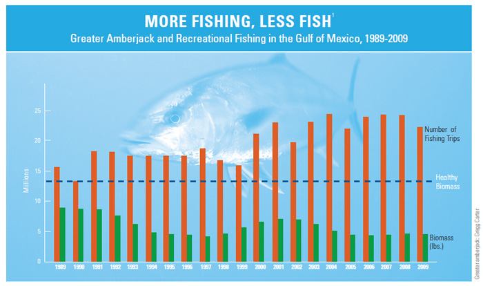 More Fishing, Less Fish