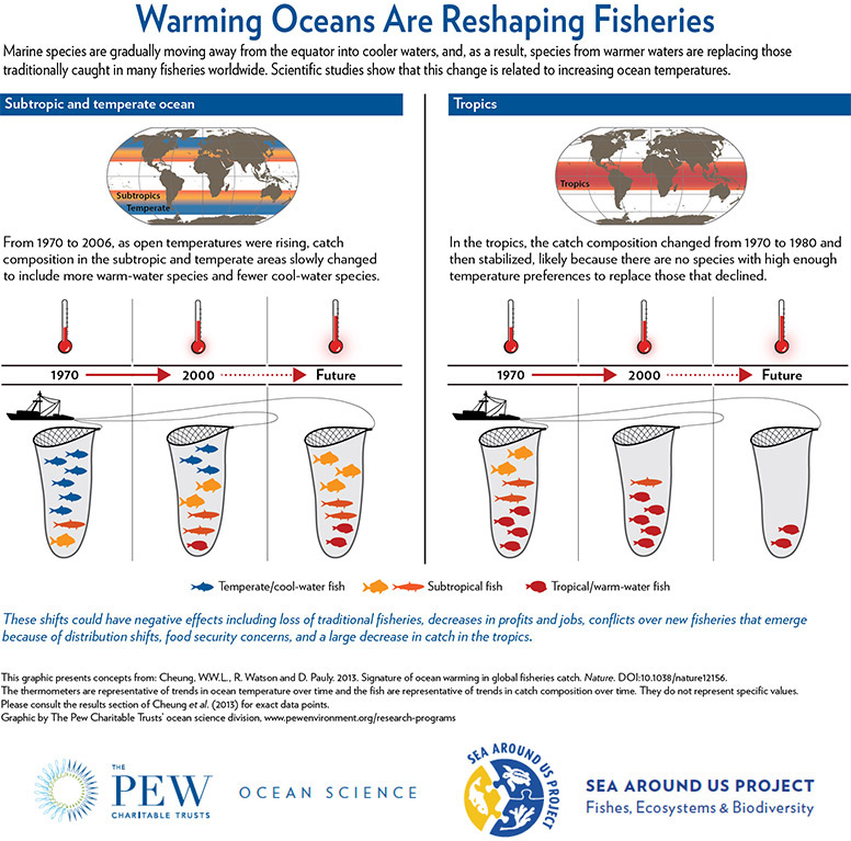Warming Oceans Are Reshaping Fisheries