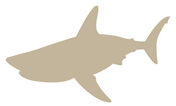 Requin-Taupe
