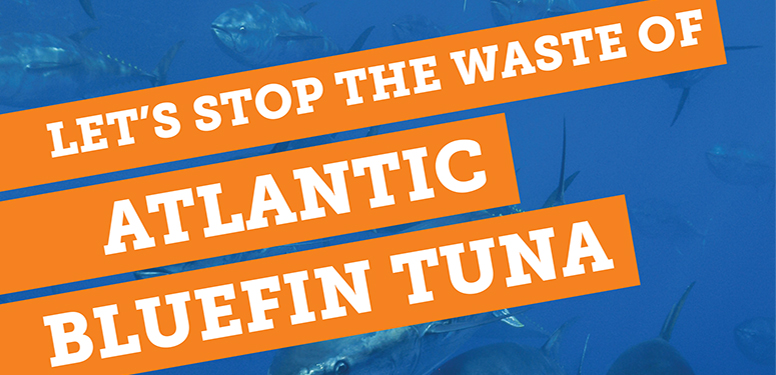 Let's Stop the Waste of Atlantic Bluefin Tuna