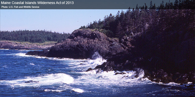 Maine Coastal Islands Wilderness Act of 2013