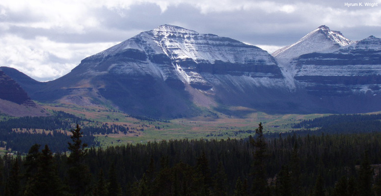 caw-High-Uinta-Wilderness-776-RC-5