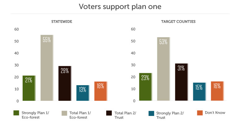 Voters support plan one