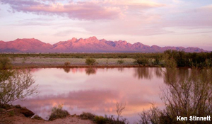 Organ Mountains-Desert Peaks Conservation Act
