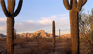 Arizona Sonoran Desert Heritage Act of 2013