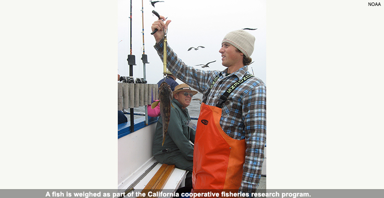 Cooperative fisheries research