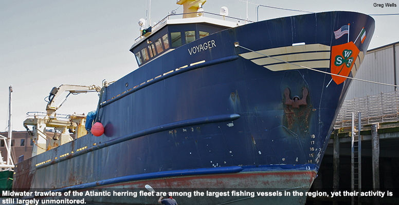 Midwater trawlers of the Atlantic herring fleet are among the largest fishing vessels in the region, yet their activity is still largely unmonitored.