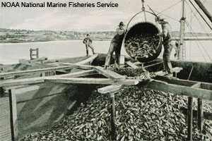 NOAA National Marine Fisheries Service