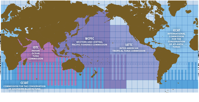 Maps: Global Tuna Management | The Pew Charitable Trusts