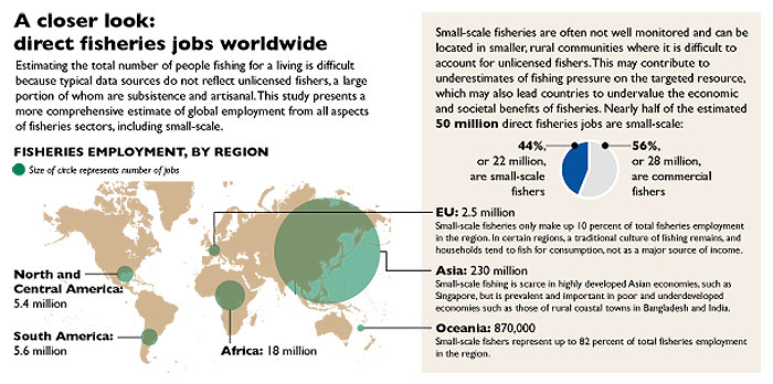 A closer look: direct fisheries jobs worldwide