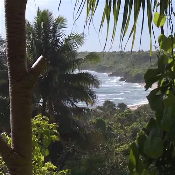Creation of Pitcairn Islands Marine Reserve