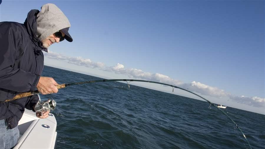 Lee Crockett reels in a striped bass off Montauk, Long Island.