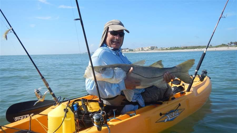 Mitch Roffer, Ph.D., shares his kayak with a big common snook that he caught off the Space Coast in East Central Florida. Snook are endemic only to Florida and southeastern Texas in the United States. This species is one of the most targeted by anglers. Adult snook feed primarily on baitfish, also known as forage fish.