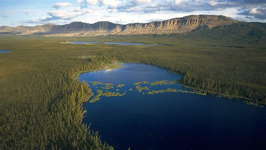 fast facts canada s boreal forest the pew charitable trusts