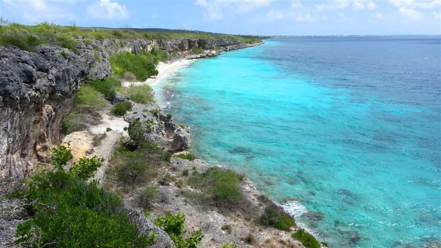 Shark Sanctuaries Announced Around Dutch Caribbean Islands