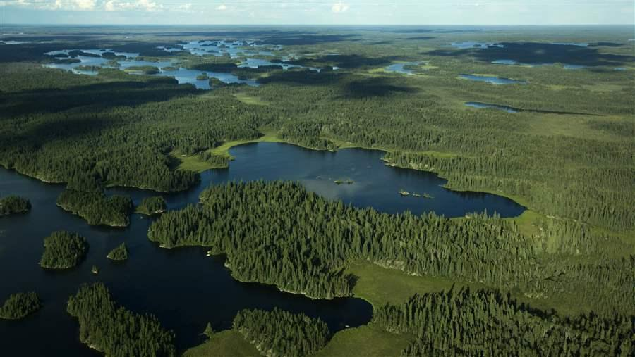 Boreal Forest and Lakes