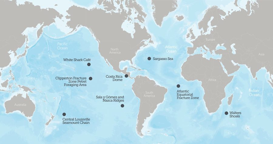 Sargasso Sea On World Map.Underwater Treasures Of The High Seas The Pew Charitable Trusts