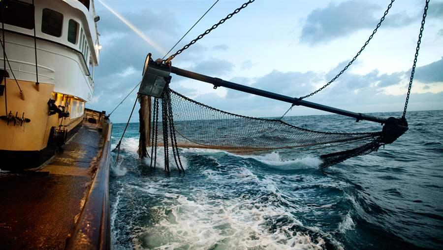 Fishing nets at sea, Netherlands