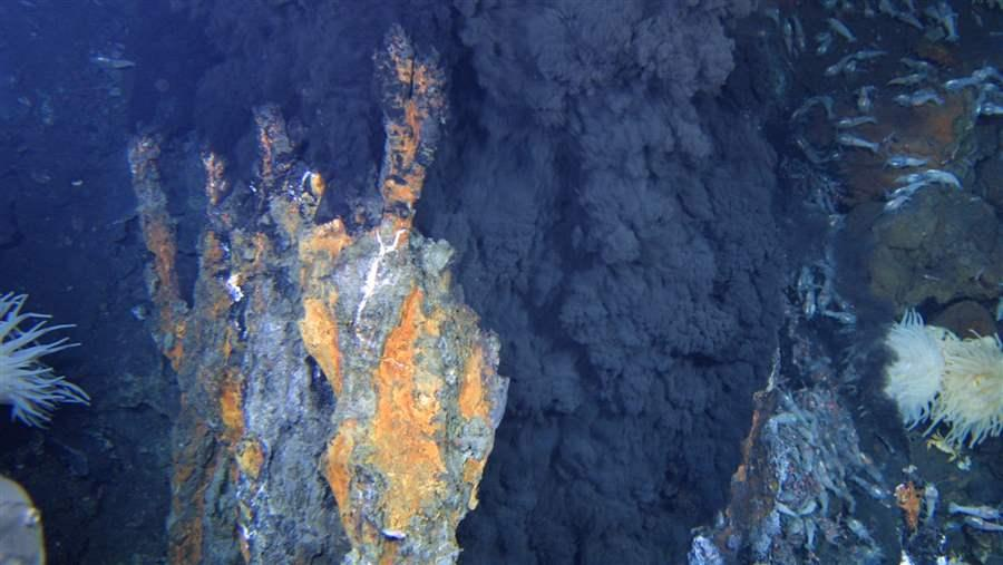 The international seabed contains rich mineral deposits