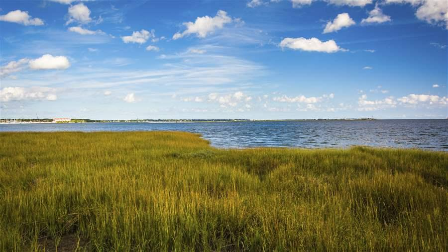Natural shoreline defenses can help reduce erosion