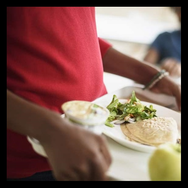 Innovation in school food choices