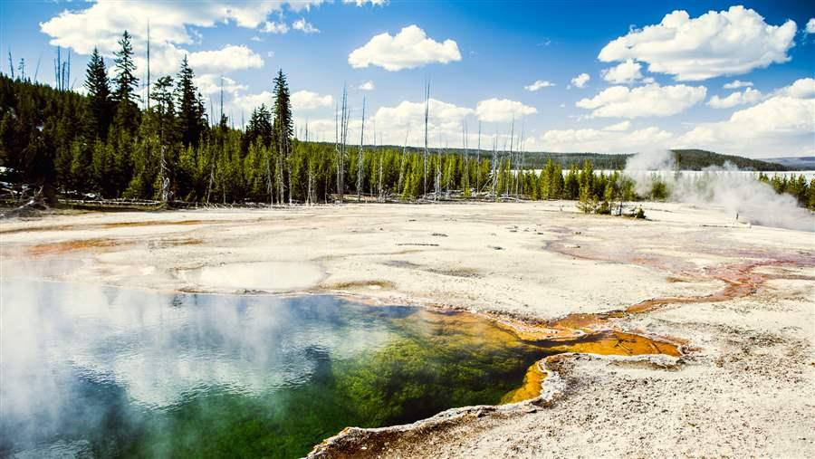 Yellowstone landscape