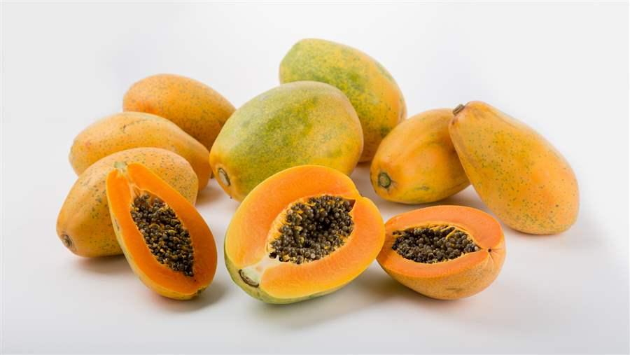 Papaya Information And Pictures