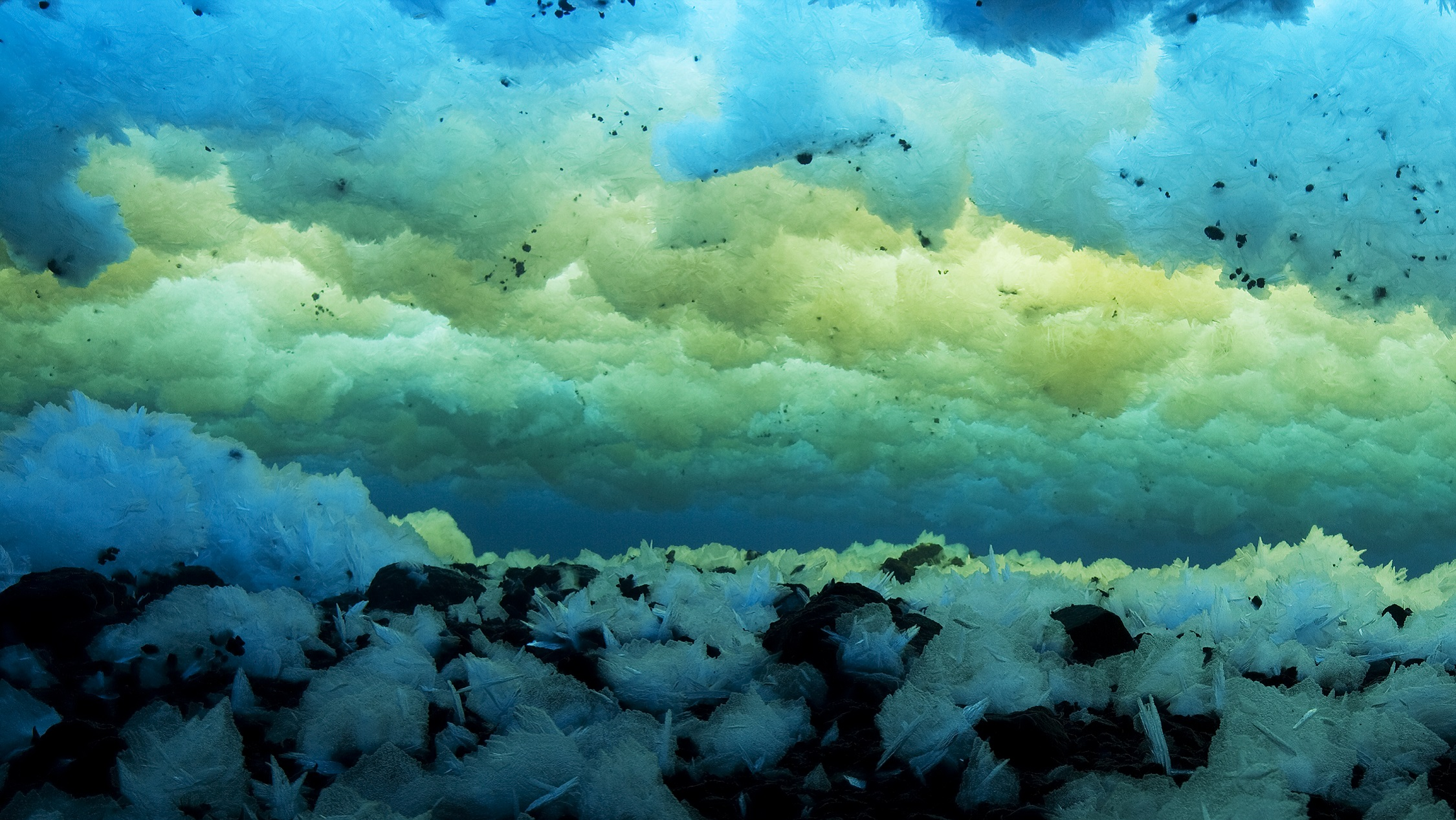 In the Southern Ocean, the World's Largest Protected Area ...