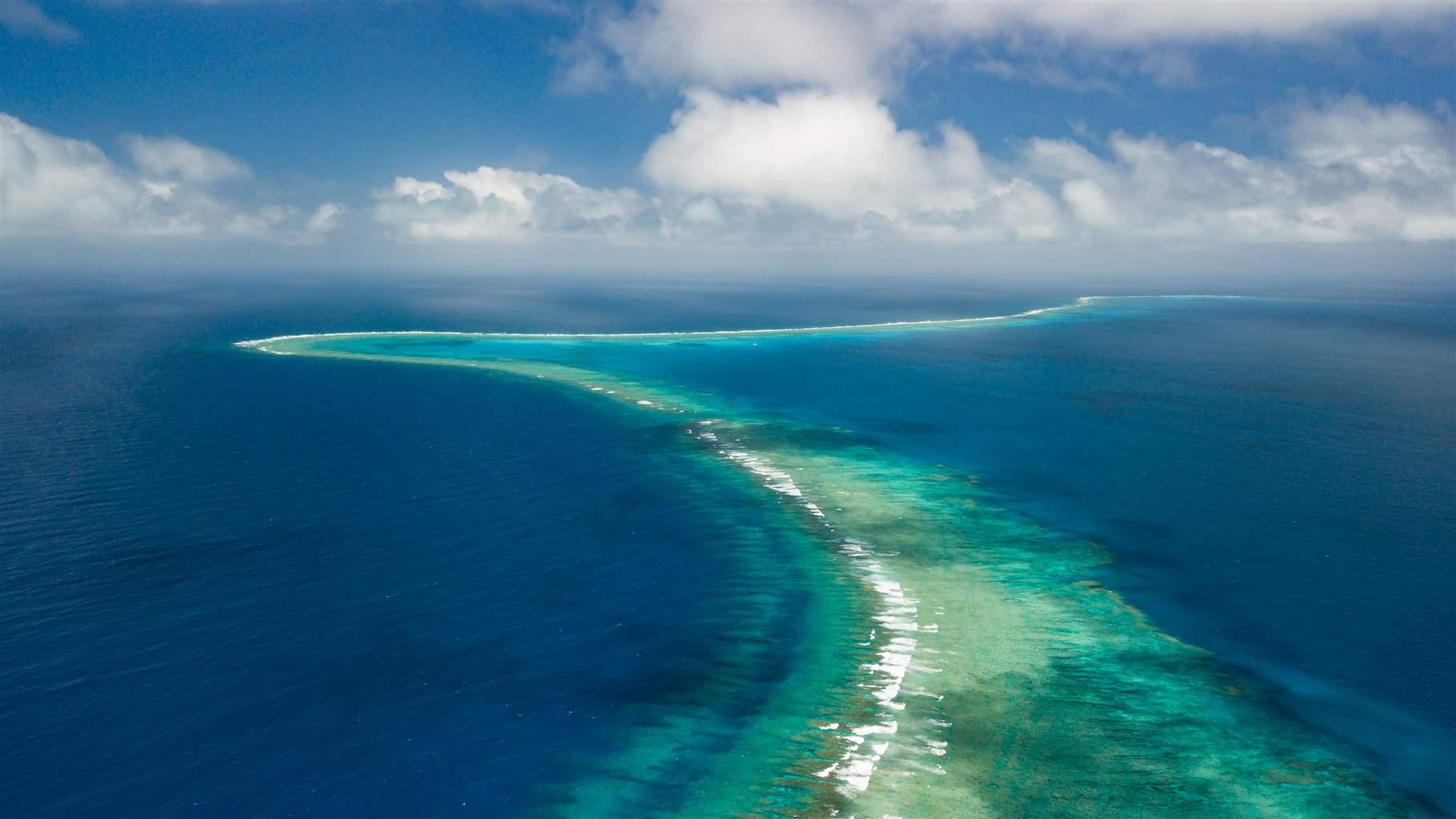 New caledonia protects remote reefs helping thousands of for The caledonia