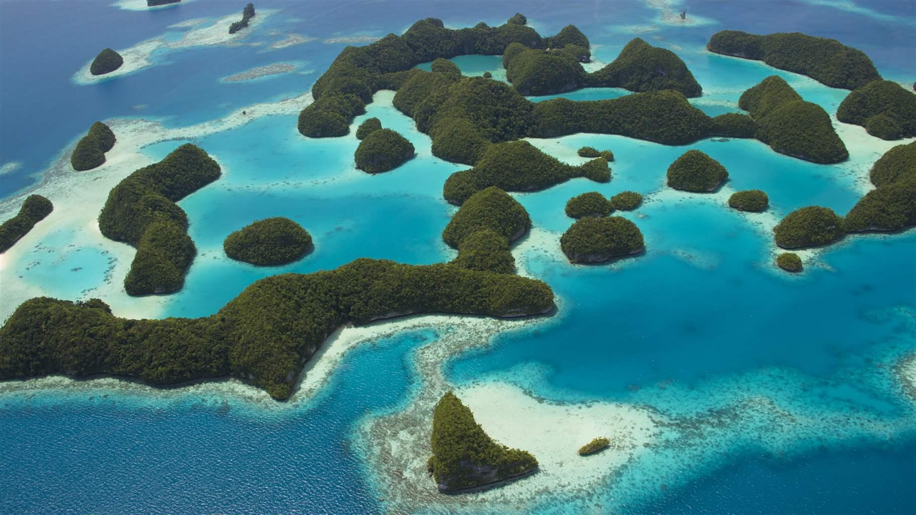 The Case for Marine Protected Areas