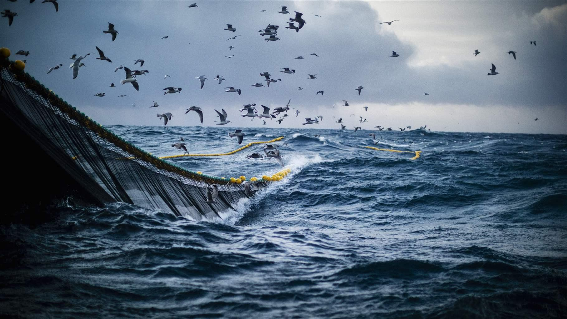 A Path to a New Fisheries Management Agreement Between the EU and ...