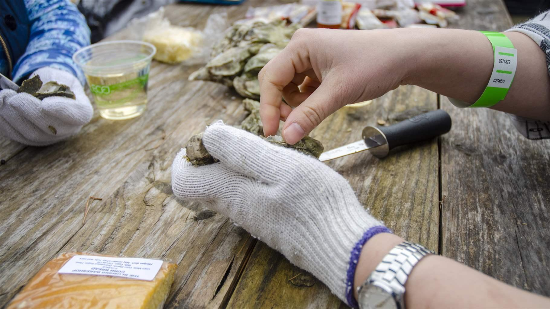 In South Carolina Oyster Shell Recycling Helps Rebuild Reefs With Many Benefits - The Pew Charitable Trusts