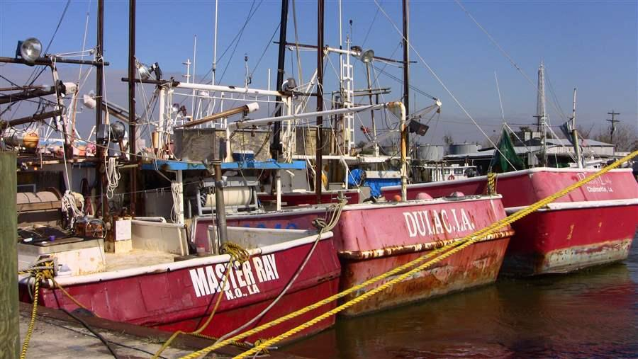 Fishing Boats Docked in LA