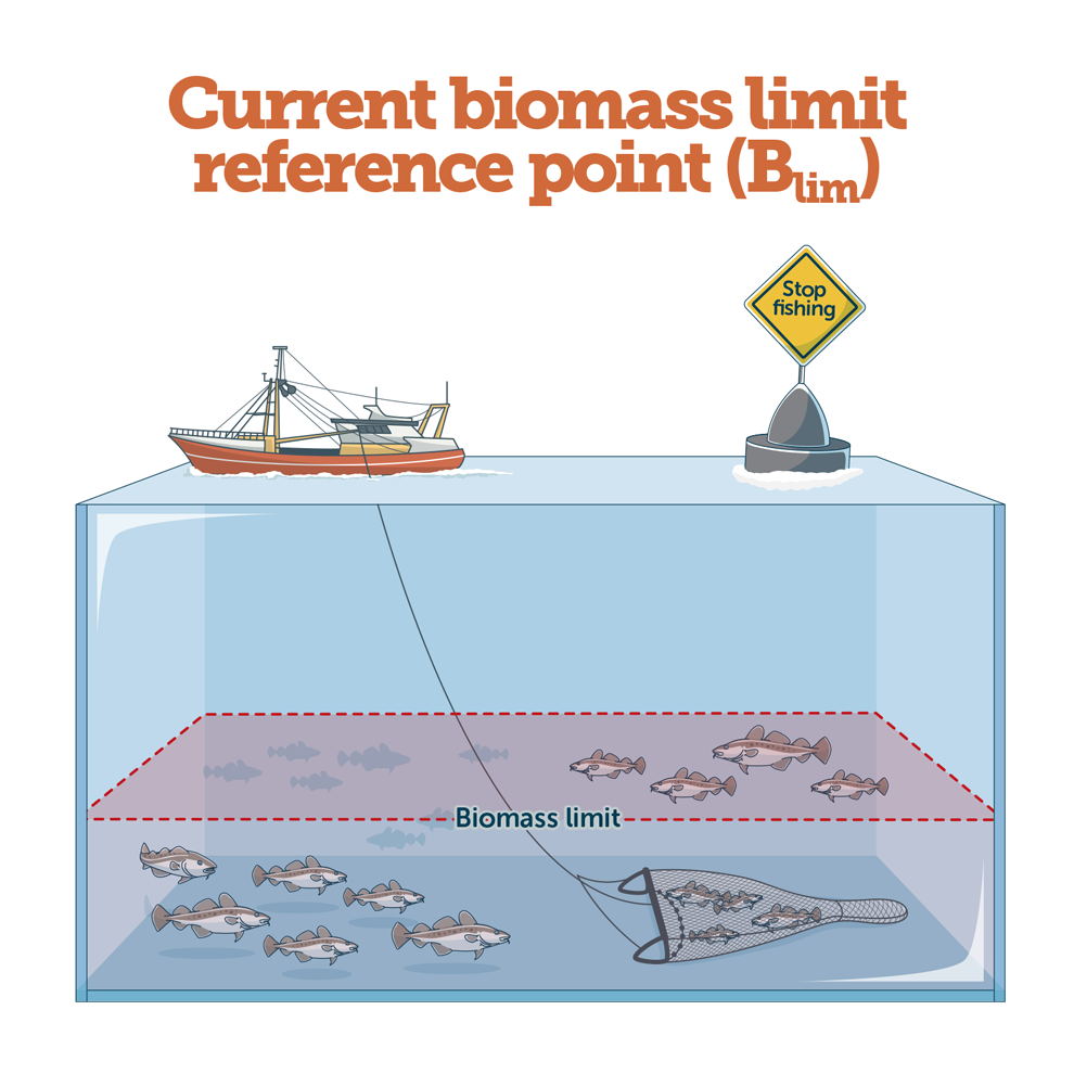 Reference Points For Europe's Fish Stocks