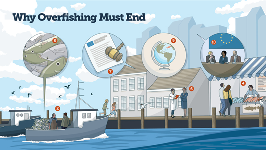 Why overfishing must end graphic