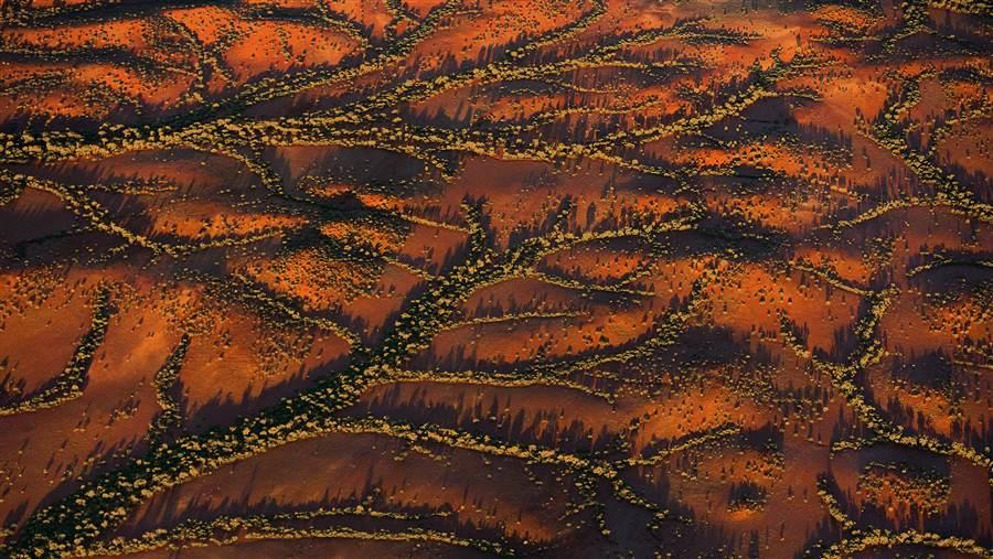 The Australian Outback comprises a rich tapestry of deeply interconnected landscapes that cover more than 70% of the continent. Ochre-coloured soils are a recurring feature across this vast landscape, as shown in this aerial view of a gully system in Western Australia's Pilbara region.