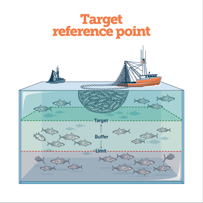 Reference Points & Rules: Managing Fisheries for the Future