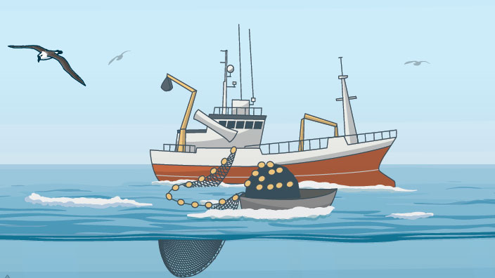 Timeline: Fisheries Management in North-Western European Waters