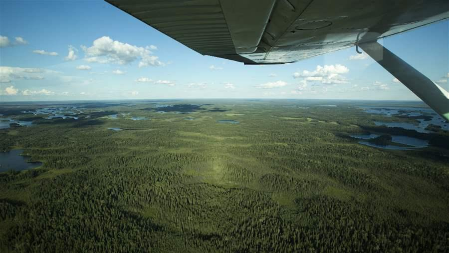 The Boreal stores 208 billion metric tons of carbon