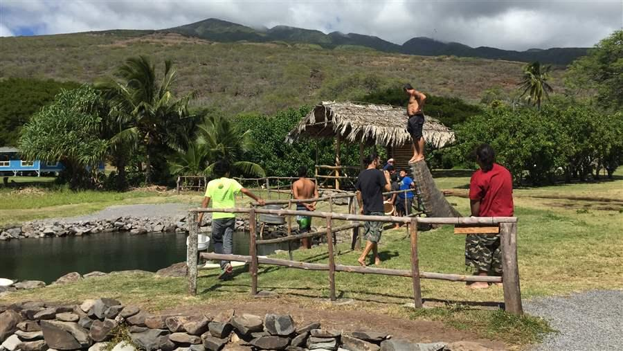 Traditional Hawaiian fishing pond